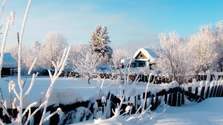 снег зима природа