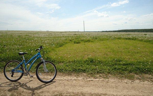 летние поля обои велосипед