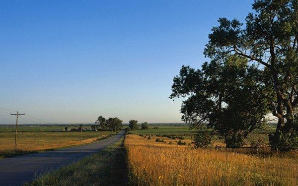 летние поля фото дорога