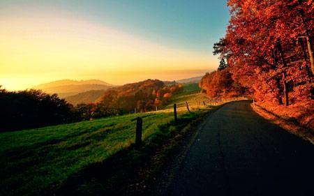 осень фото