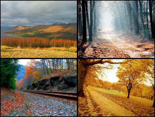 осень, осенние обои бесплатно