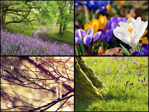 скачать обои весна svoya