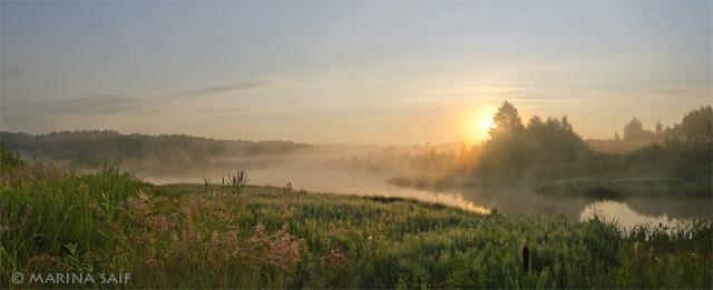 Утро и туман у реки. Марина Сайф