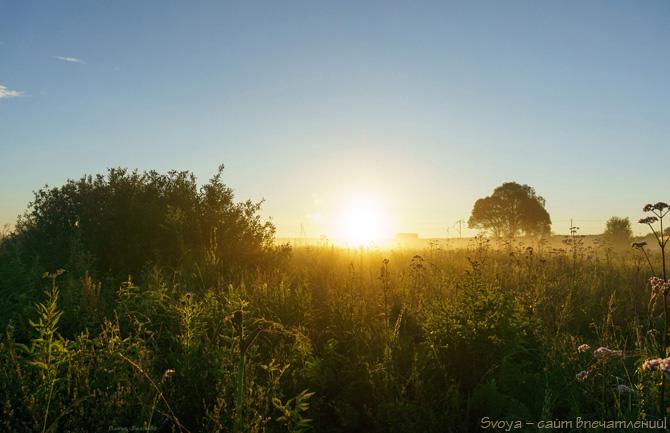 природа летом на рассвете, пейзаж
