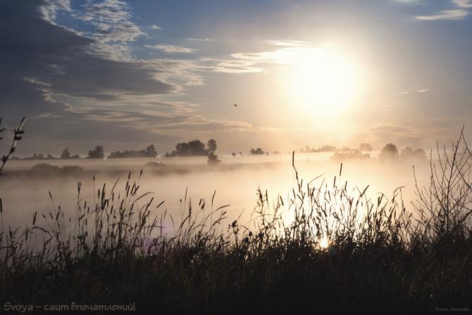 рассвет и туман на реке