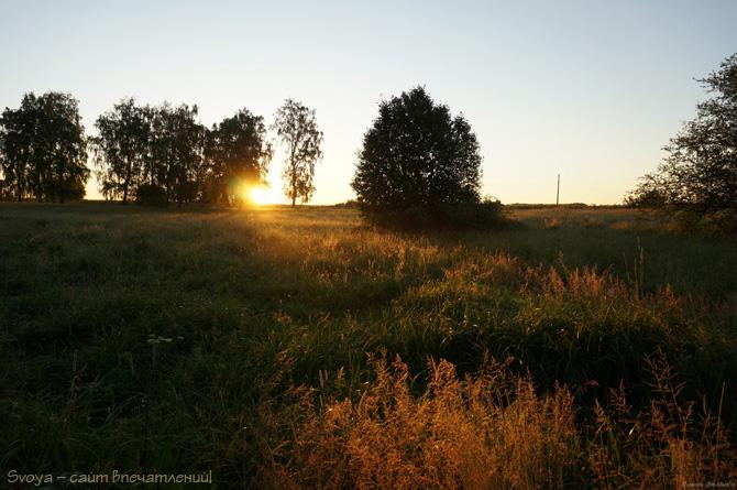 природа на рассвете летом