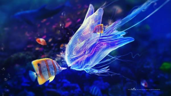 Подводный креатив
