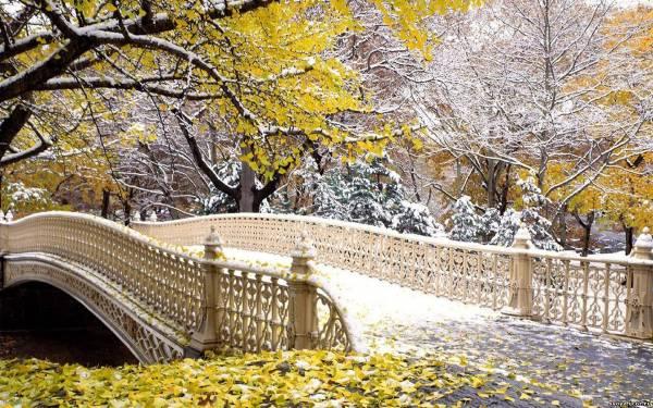 Осенний мостик нью йорк обои 1440х900