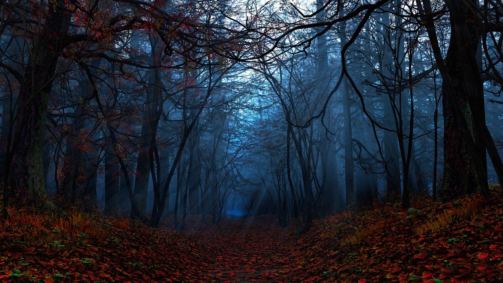 Черный лес фон