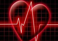чеснок сердце