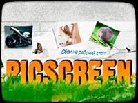 Рicscreen