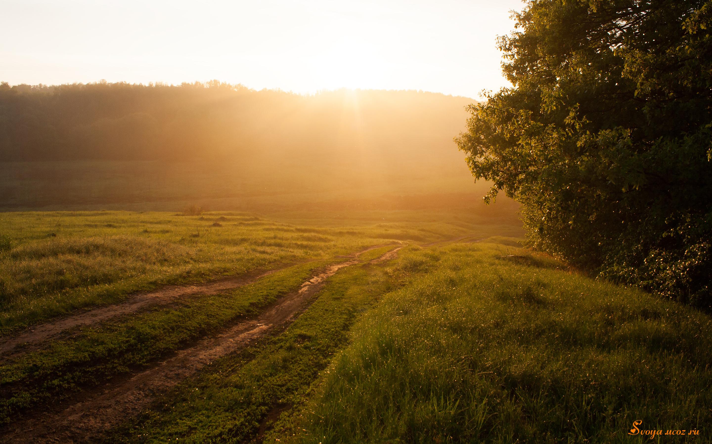 hd обои природа солнечная и красивая
