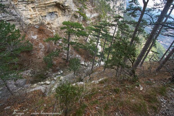 боткинская тропа в Крыму